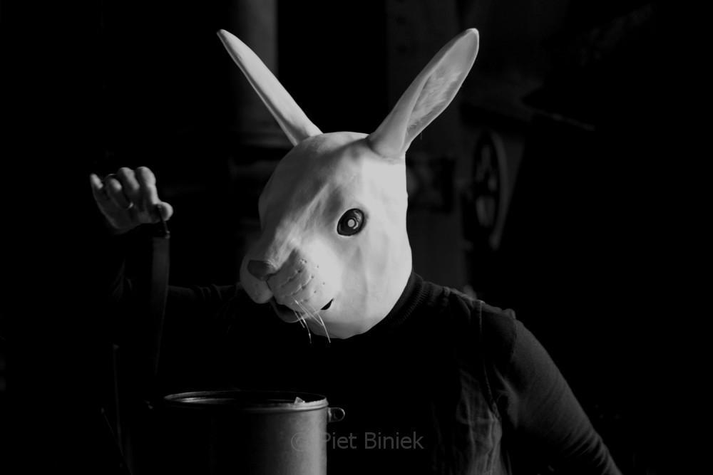 do not trust the rabbit